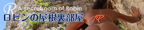 錦糸町ロタティオン:リンク:robin_2361